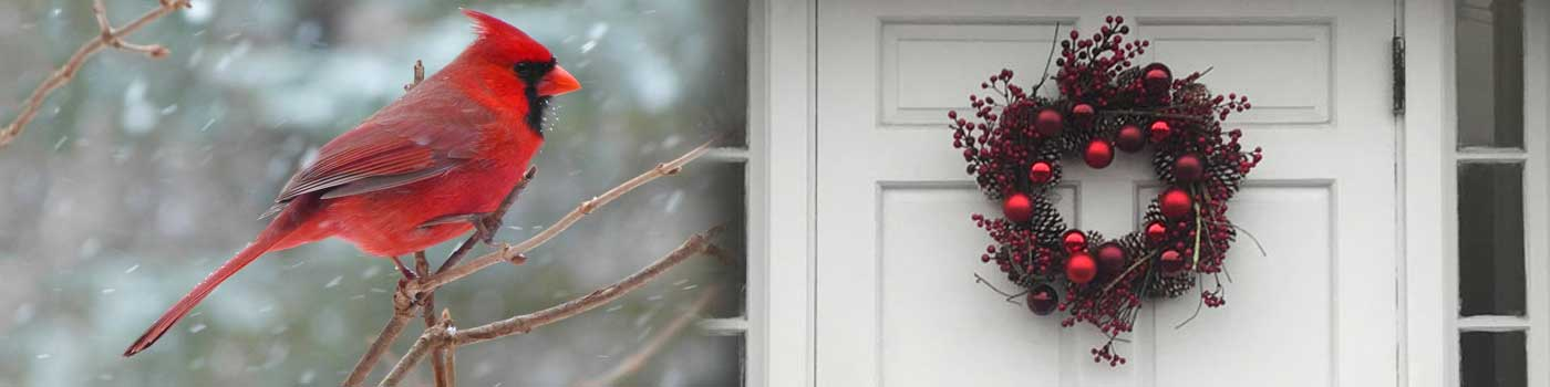Cardinal and wreath on door